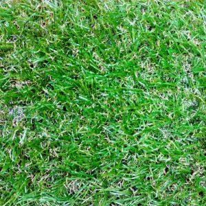 iskusstvennoe-travyanoe-pokrytie-grass-mix
