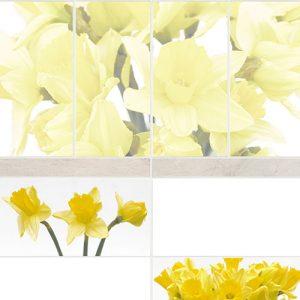 digital-print-narciss-foto1_w800-h800-q95